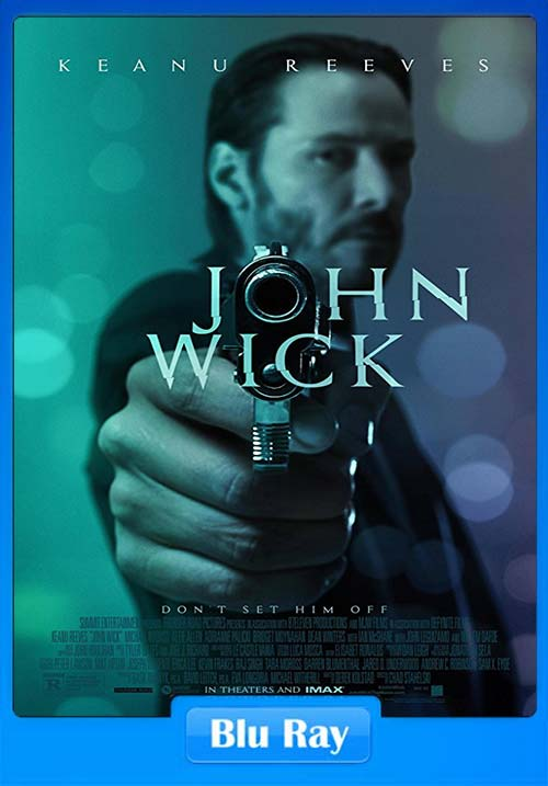 John Wick 2014 720p Dual Audio BluRay Hindi x264 | 480p 300MB | 100MB HEVC
