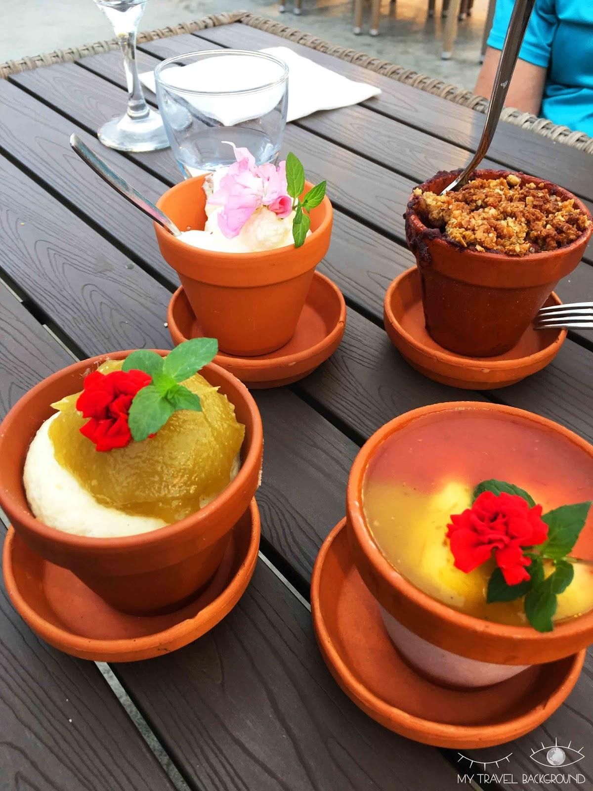 My Travel Background : 14 plats typiques dégustés en voyage - Repas à la tomate en Islande, Fridheimar