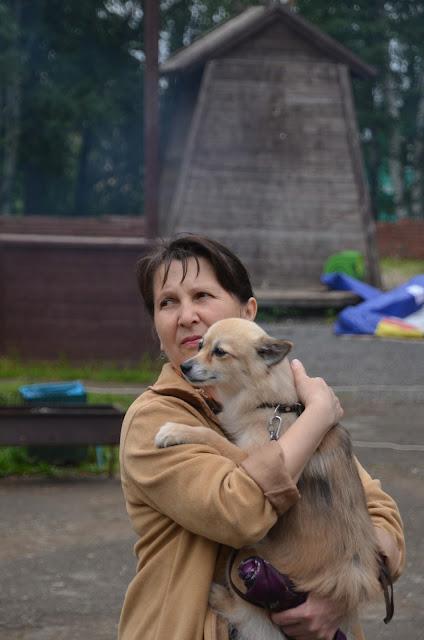 Шоу-выставка собак в день города Лысьвы