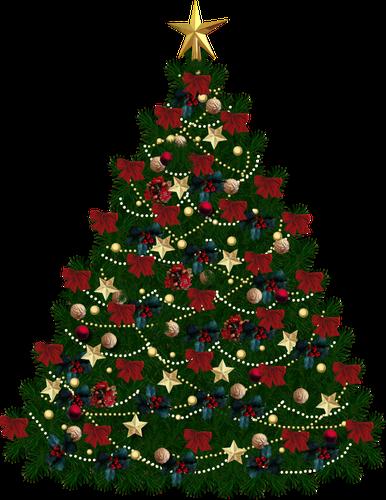 Mundo Png árvores De Natal