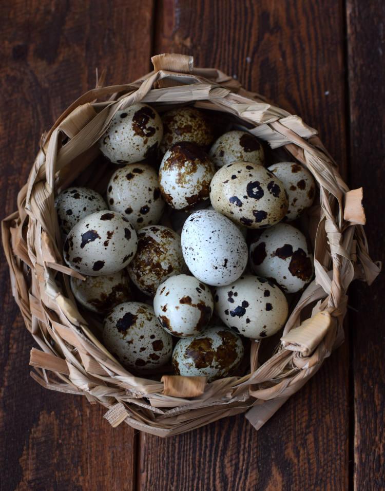 Huevos de codorniz frescos