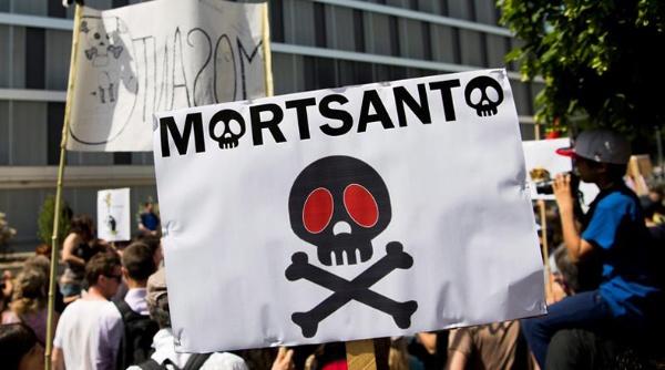 Bayer compra Mosanto para tener el monopolio global de la comida