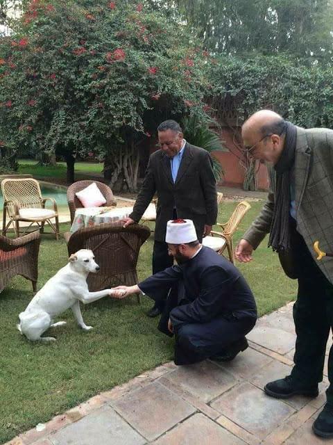 Pak Arab Pegang Anjing
