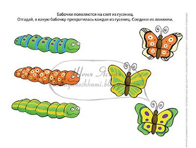задания с бабочками, задания для детей