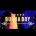 AUDIO    Burna Boy – Rizzla   Download New song