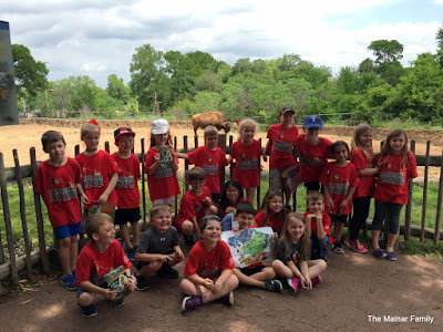 18 first graders posing together in front of a buffalo