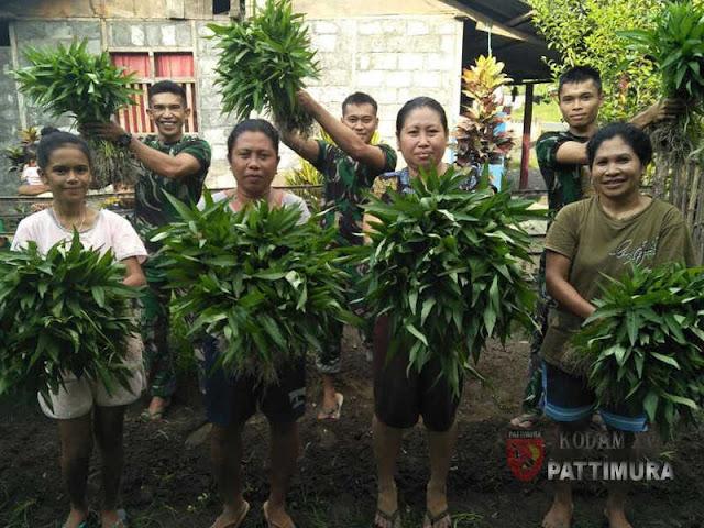 Satgas Yonif Kabaresi Berkebun dengan Masyarakat Desa Mede