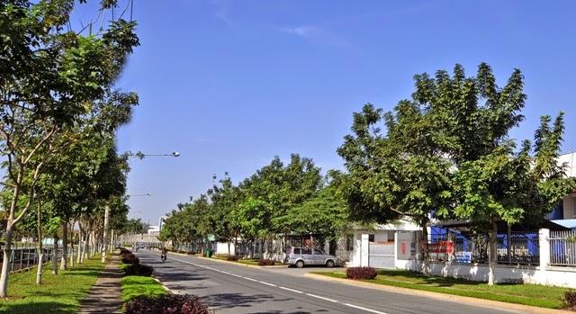 Đất sổ đỏ vsip 1 - Việt Sing, Thuận An, Bình Dương.