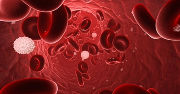 Ulasan Seputar Jenis-jenis Kanker Darah dan Gejalanya