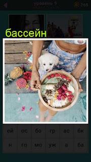 около бассейна сидит женщина и кормит собаку из миски