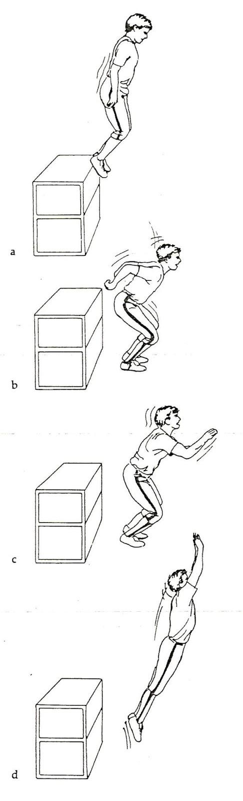 Cara Jumping Tinggi : jumping, tinggi, Menambah, Vertikal, Volly:, Volly