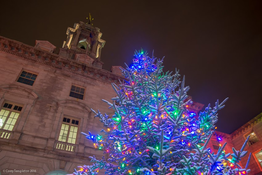 Portland, Maine USA December 2016 photo by Corey Templeton. The Christmas Tree in front of Portland City Hall was looking festive earlier this week after a dusting of snow.