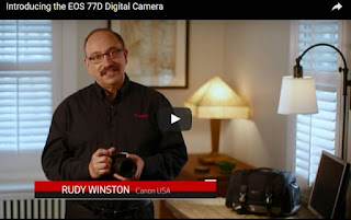 Introducing the EOS 77D Digital Camera - Official Canon Video