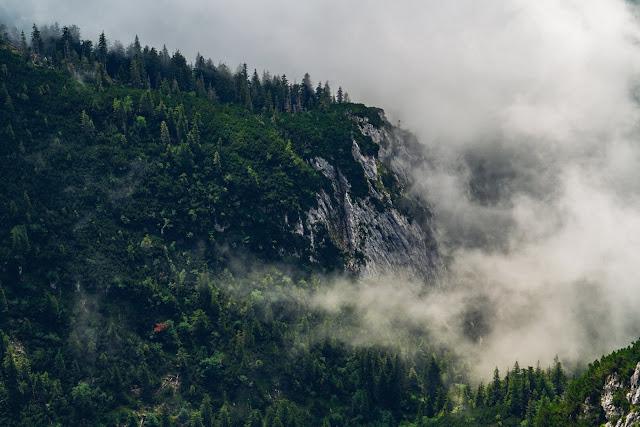 Gamsknogel und Kohleralm  Bergtour Inzell  Wanderung Chiemgauer Alpen 15