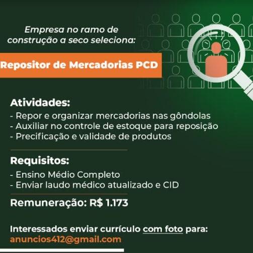 REPOSITOR DE MERCADORIAS - PCD