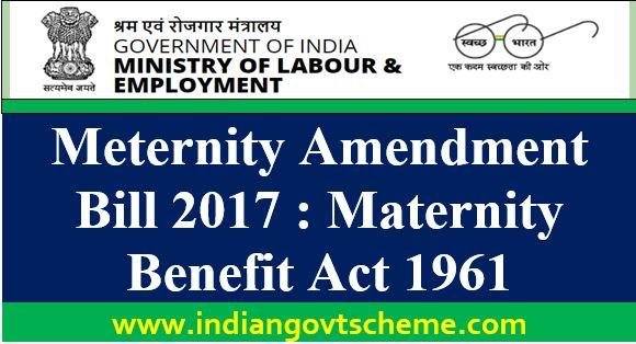 Meternity+amendment+bill