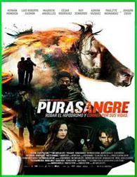 Pura sangre 2016 | 3gp/Mp4/DVDRip Latino HD Mega