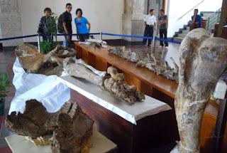 Museum Mahameru Blora