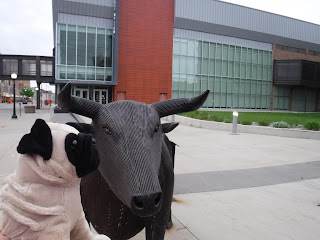 a plush pug faces a large metal sculpture of a bull, which sits next to a grassy space in front of a gray building with a wall of windows.