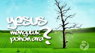 Yesus Mengutuk Pohon Ara