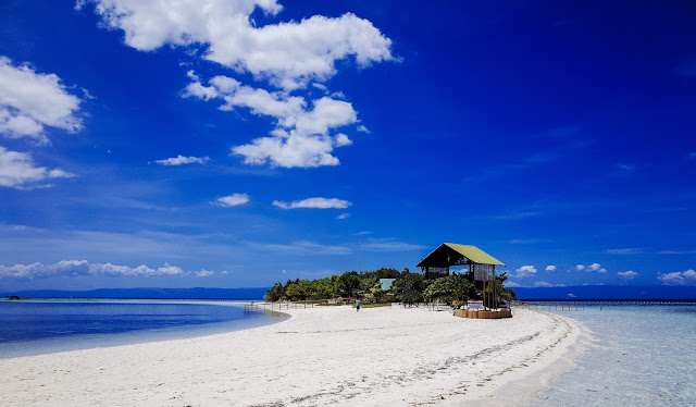 Guide to Planning Your Trip to Bohol