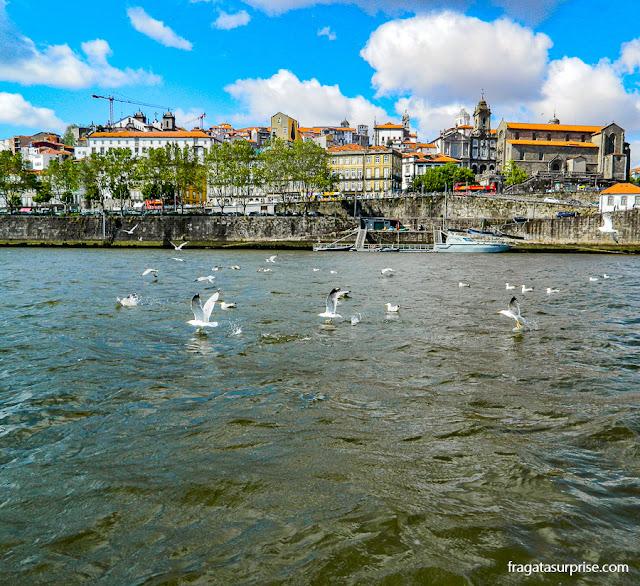Passeio de barco pelo Rio Douro no Porto, Portugal