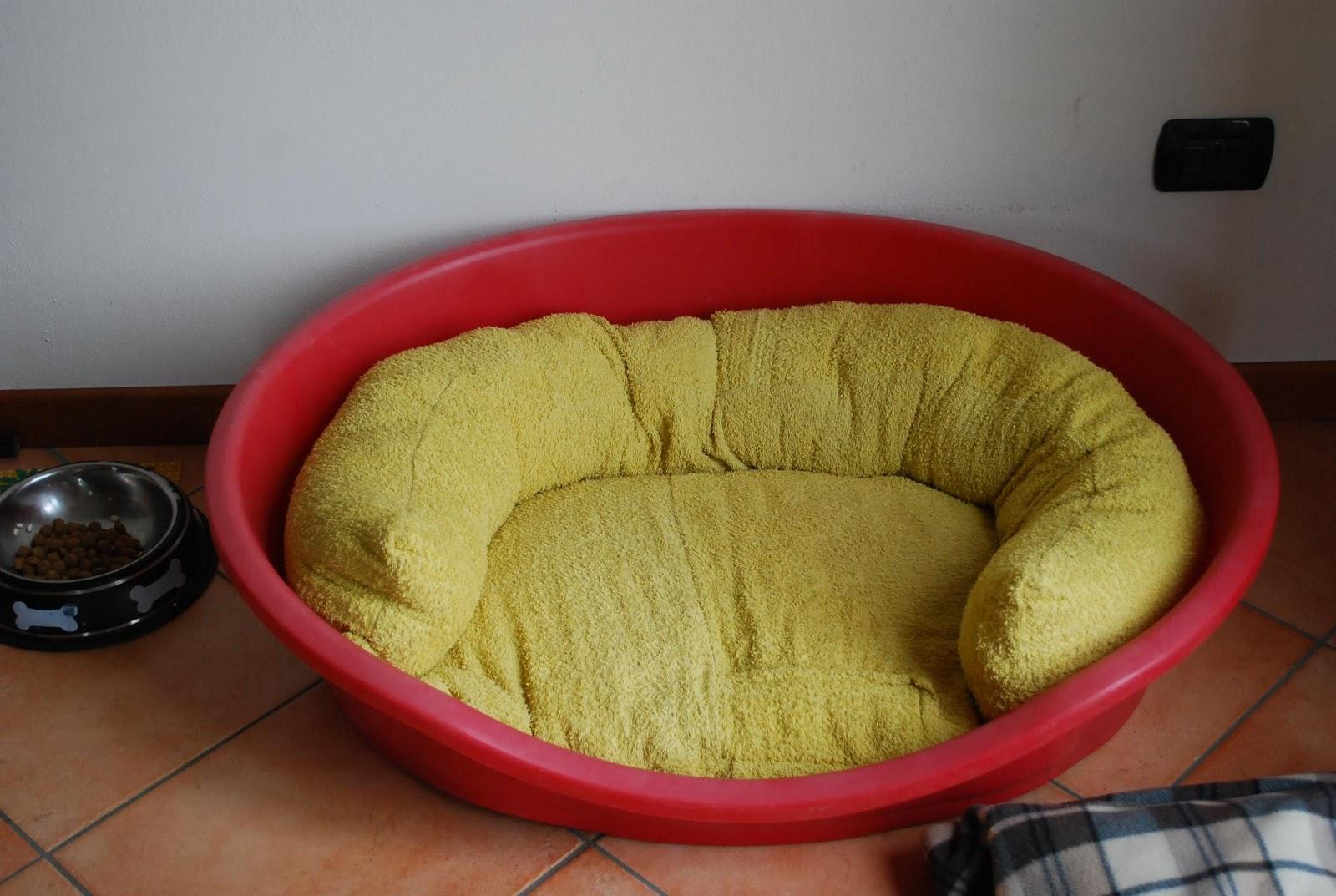 Idee Cucce Per Cani le idee di pizzipazzi: da un vecchio accappatoio a cuccia