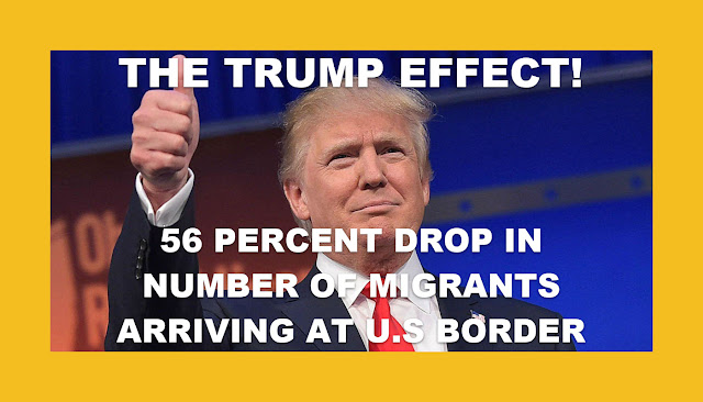 THE TRUMP EFFECT!