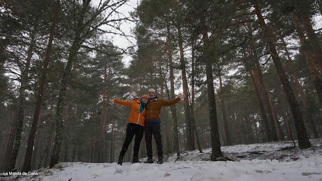 nosotros en el bosque nevado