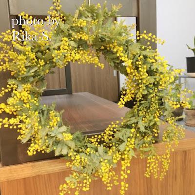 理想の家を目指す♪陽の当たる部屋で花を愛でて暮らしたい