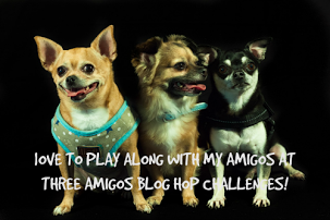 Three Amigos Challenge Blog