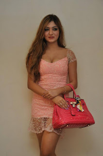 Actress Khushi Mukherjee Pictures in Short Dress at Bhadram Be Careful Brother Audio Launch 0035