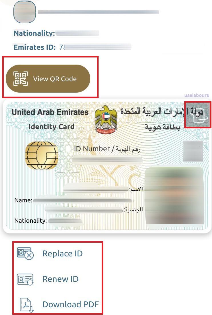 download emirates id copy
