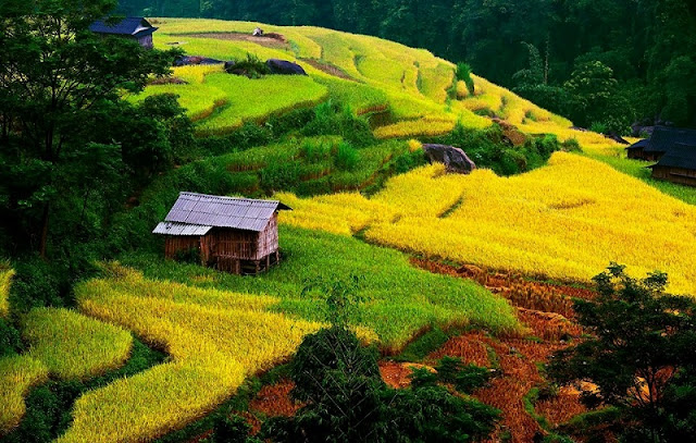 The journey to discover Ha Giang: You and Me