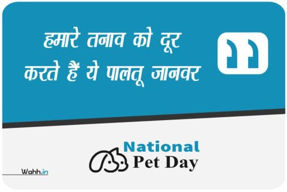 Pet Day Wishes In Hindi