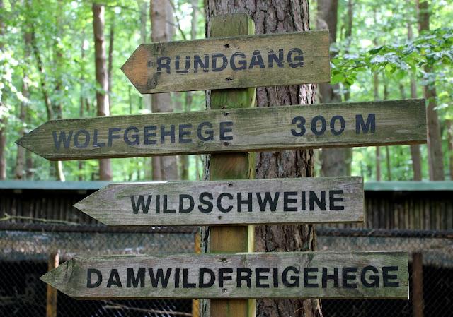 Tierpark Kunsterspring Rundgang