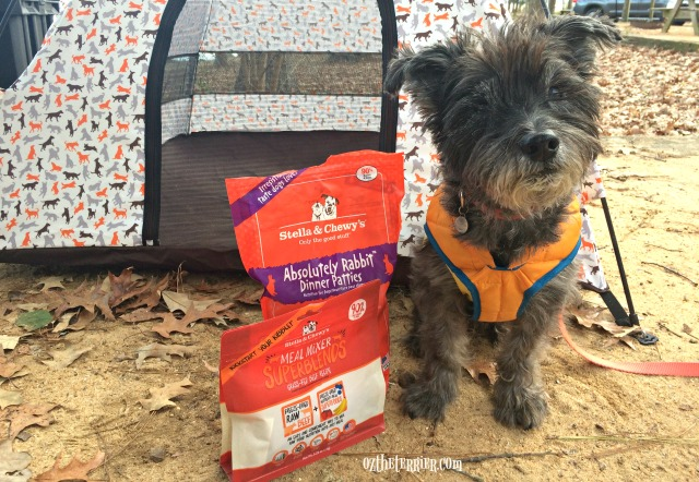 summer pet travel with stella and chewys freeze dried dog food