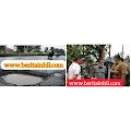 PUTR Inhil Akui Sudah Berbuat Tentang Perawatan Jalan di Inhil Termasuk Sungai Gergaji Keritang