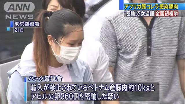Một người Việt bị bắt do đem nem chua mắc dịch tả châu Phi vào Nhật Bản