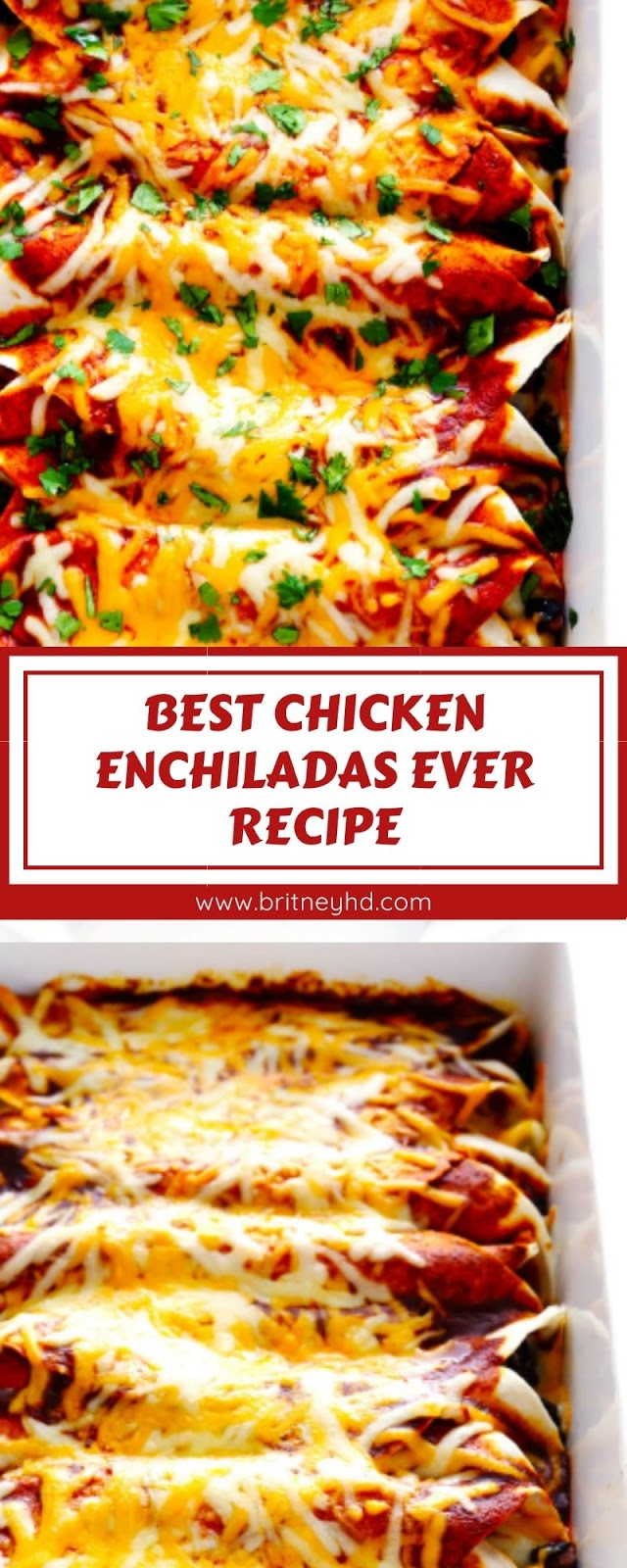 BEST CHICKEN ENCHILADAS EVER RECIPE