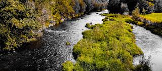 photo of River Ostravice by Jan Hovjacký