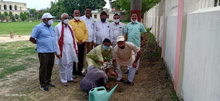 बेहतर भविष्य के लिए करें पौधरोपण : राघवेंद्र | #NayaSaberaNetwork