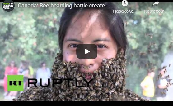 Διαγωνίζονται για το ποιος θα κάνει τη μεγαλύτερη και βαρύτερη γενειάδα από μέλισσες video