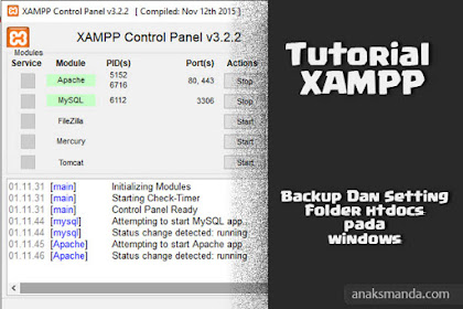 Cara Backup dan Setting Folder htdocs & MySQL Pada Xampp Windows