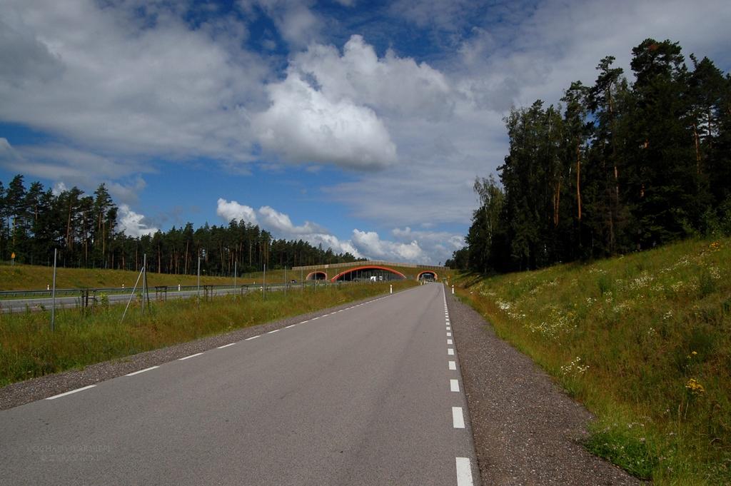 Okolice Miłomłyna, droga serwisowa przy trasie S7