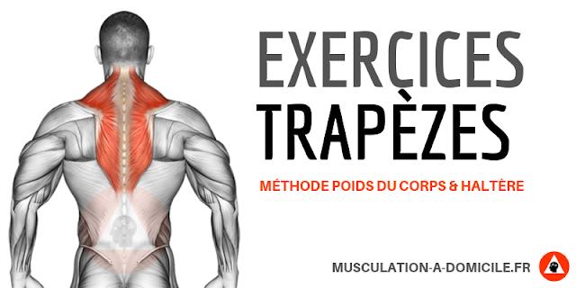 musculation à domicle exercices musculation trapèzes à poids du corps gainage