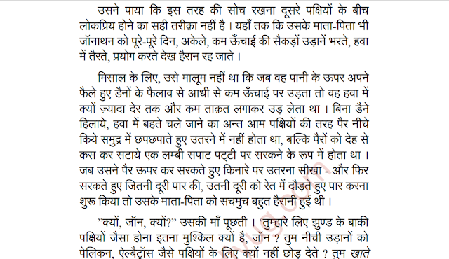 Jonathan Livingston Seagull Hindi PDF