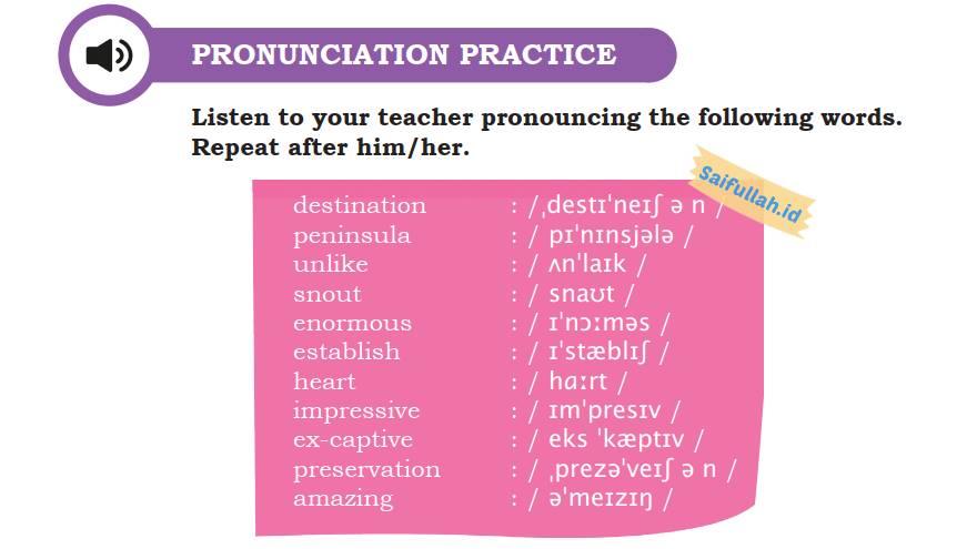 Belajar Mengucapkan Kata Bahasa Inggris Chapter 4 Halaman 52 Pronunciation Practice