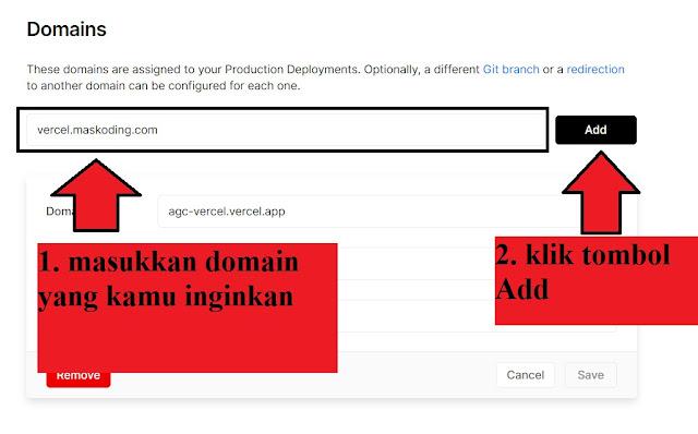 input domain di vercel