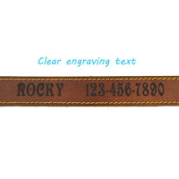 Dog Collars Personalised - Dog Collars ID
